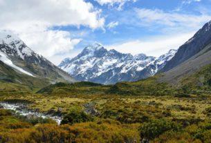 Maori Scholarships